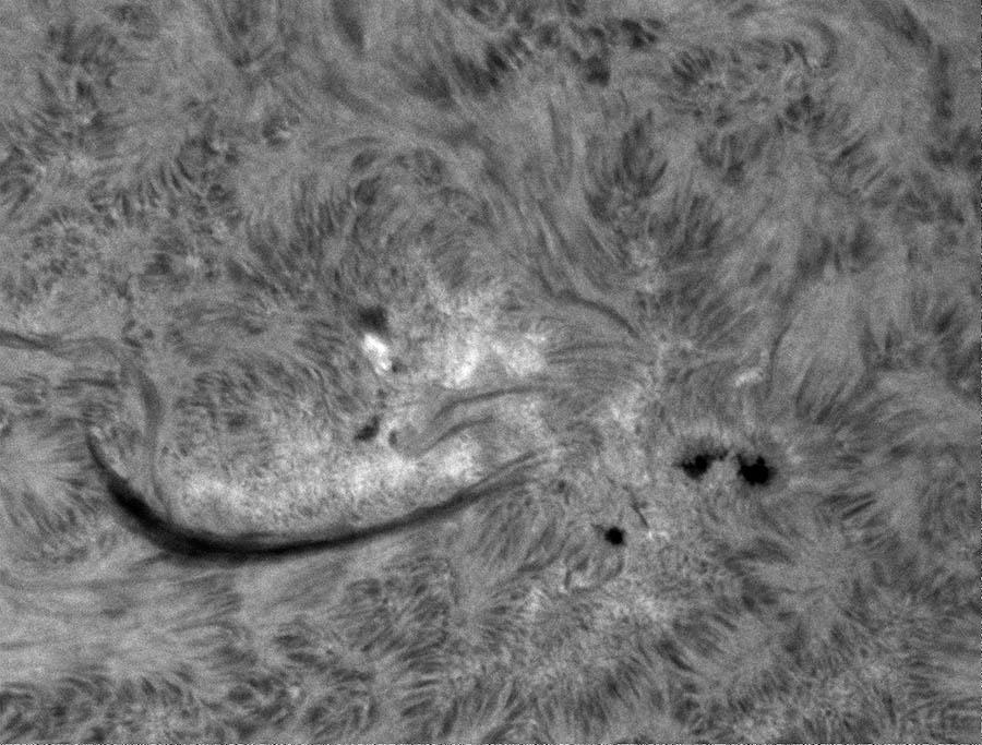 V oblasti NOAA 11755 jsme pozorovali nejen zajímavá zjasnění, ale také ukázkový filament aktivní oblasti (tmavá