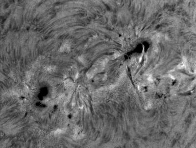 Velmi aktivní oblast NOAA 12172 zachycená dne 28. 9. 2014 v 08:04:32 UT ve spektrální čáře H-alfa (můžete porovnat s předchozím snímkem ze stejného dne v jiné spektrální čáře). Drobné skvrny velmi rychle vznikaly a zanikaly, oblast díky tomu měla každých pár hodin trochu jiný vzhled. Pět dnů před vyfocením byla pozorovaná v této oblasti erupce o mohutnosti M2.3.